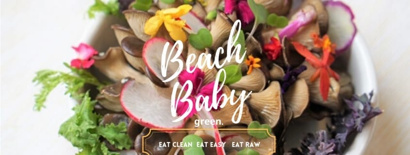 Beach Baby Green, a Raw Salad Subscription Service